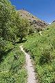 2014 Prowincja Sjunik, Ścieżka do wodospadu Szaki (01).jpg