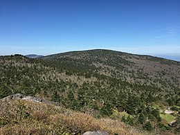 2017-05-16 09 51 01 View west-northwest toward Mount Rogers from the summit of Pine Mountain within the Mount Rogers National Recreation Area in Grayson County, Virginia.jpg