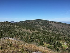 Mount Rogers - View of Mount Rogers from Pine Mountain