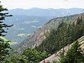 2017-07-22 (23) View from Lechnergraben at Dürrenstein (Ybbstaler Alpen).jpg