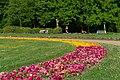 20190502 Park na Wyspie Małgorzaty w Budapeszcie 0744 1919 DxO.jpg