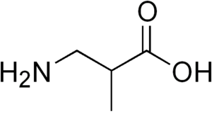 3-Aminoisobutyric acid - Image: 3 aminoisobutyric acid