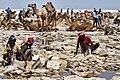 30 Hard work by the saltworkers on Lake Asale.jpg
