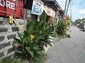 3368Tikas Philippines 03.jpg