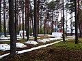 3505. Bol'shaya Izhora. Memorial military cemetery.jpg