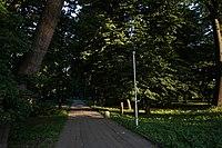 46-109-5001 Самбірський парк, Самбір.JPG