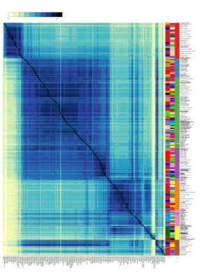 6000 Individual Ancestry Mapper Plot.png