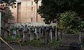 6641vik Na Krakowskim Kazimierzu - cmentarz. Foto Barbara Maliszewska.jpg