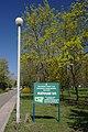 71-104-5001 Zolotonosha Memorial park SAM 0948.jpg