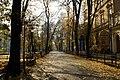 7344vik Planty krakowskie. Foto Barbara Maliszewska.jpg