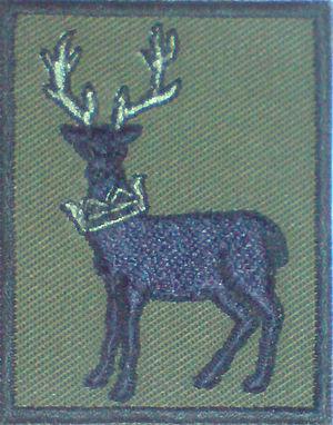 No. 90 Signals Unit RAF - The Tactical Recognition Flash of TCW and 90 Signals Unit