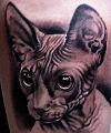 A043 afferni afferniandrea tattoo tatuaggi ritratto portrait.jpg