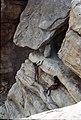 ASC Leiden - W.E.A. van Beek Collection - Dogon daily life 08 - Boys climb the rock face. Relaxation on a high level, Tireli, Mali 1979.jpg