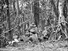 Australian soldiers man a defensive position in the jungle