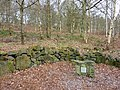 A Memorial in the woods - geograph.org.uk - 1740629.jpg
