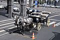 A carriage parked in Avenida Infante dom Henrique, Ponta Delgada (16676059510).jpg