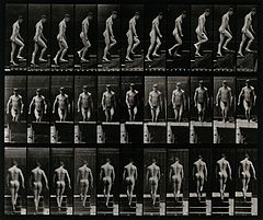 A man walking up stairs. Photogravure after Eadweard Muybrid Wellcome V0048641.jpg