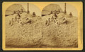 A pyramid of cotton seed, Florida, by Kilburn, B. W. (Benjamin West), 1827-1909 2.png