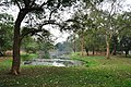 Acharya Jagadish Chandra Bose Indian Botanic Garden - Howrah 2011-02-20 1646.JPG