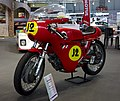 Aermacci 350 Ala d'oro (1965) 1X7A7902.jpg