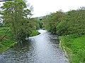 Afon Hafren (River Severn) - geograph.org.uk - 1321525.jpg