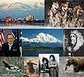 Alaska collage 2.jpg