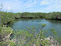 Aldabra Lagoon (32874699360).jpg