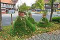 Altenau (Harz) IMG 4548.jpg