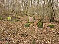 Alter jüdischer Friedhof in Cochem von 1836-37.jpg