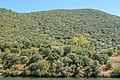 Alto Douro Vinhateiro DSC00331 (36932781950).jpg