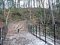 Alum Scar wood - panoramio (6).jpg
