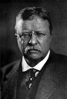 Americana_1920_Theodore_Roosevelt