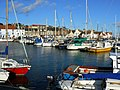 Anstruther Marina - geograph.org.uk - 990629.jpg