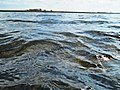 Apa lacului Amara.JPG