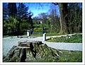 April Freiburg Botanischer Garten - Master Botany Photography 2013 - panoramio (7).jpg