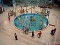 Aquatic Exhibits - Dynamotion Hall - Science City - Kolkata 2006-07-03 04708.JPG