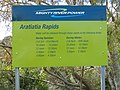 Aratiatia Control Gates opening times - panoramio.jpg