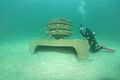Artificial Reef by Reefmaker.jpg