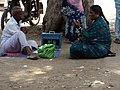 Astrology,parrot,rural,,nainar palayam,Tamil Nadu429.JPG