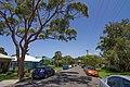 Austinmer NSW 2515, Australia - panoramio (1).jpg