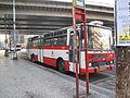 Autobus č. 5834 na Florenci.jpg