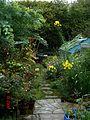 Autumn garden - Flickr - peganum (1).jpg