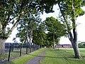 Avenue of Trees near Ketwell School - geograph.org.uk - 453435.jpg