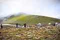Babusar Pass area.jpg