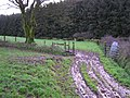 Back Field entrance, Errigle - geograph.org.uk - 1058990.jpg