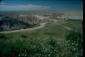 Badlands National Park BADL3684.jpg