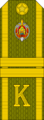 Belarus MIA—24 Cadet-Junior Sergeant rank insignia (Olive)—Removable.png