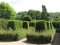 Belsay Hall - the Yew Garden - geograph.org.uk - 1479560.jpg