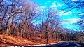Bend On A Sunny Winter Afternoon 1 (249008711).jpeg