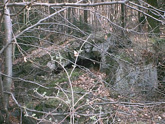 Operation Undertone - Ruins of a bunker in the Bienwald